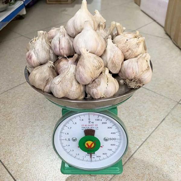 Tỏi Khô Thái Thuỵ 1kg
