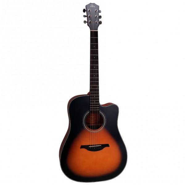 Đàn guitar acoustic Rex D1CVS